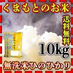 米 10kg 九州 熊本県産 ひのひかり 無洗米 新米 令和2年産 ヒノヒカリ 送料無料 5kg2個 精白米 くまもとのお米 kuma-kome