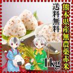 米 1kg 九州 熊本県産 赤米 無農薬 令和元年産 送料無料 古代米 くまもとのお米 kuma-kome
