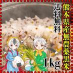 米 1kg 九州 熊本県産 黒米 無農薬 送料無料 古代米 くまもとのお米 kuma-kome