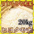 新米 精白米 令和元年産 1年産 2019年産 九州 熊本県産 もち米 20kg 5kg4個 ヒヨクモチ くまもとのお米