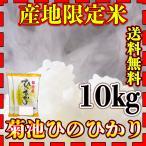 米 10kg 九州 熊本 菊池産 ひのひかり 令和2年産 ヒノヒカリ 精白米 あすつく 5kg2個 産地限定米 くまもとのお米 kuma-kome