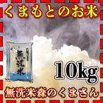 米 10kg 九州 熊本県産 森のくまさん 無洗米 令和元年産 5kg2個 精白米 くまもとのお米