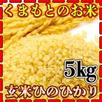米 5kg 九州 熊本県産 ひのひかり 玄米 新米 令和2年産 ヒノヒカリ あすつく 5kg1個 くまもとのお米 kuma-kome