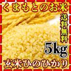 米 5kg 九州 熊本県産 ひのひかり 玄米 新米 令和2年産 ヒノヒカリ 送料無料 あすつく 5kg1個 くまもとのお米 kuma-kome