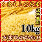 米 10kg 九州 熊本県産 ひのひかり 玄米 新米 令和2年産 ヒノヒカリ 送料無料 あすつく 5kg2個 くまもとのお米 kuma-kome