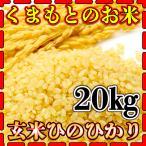 米 20kg 九州 熊本県産 ひのひかり 玄米 新米 令和2年産 ヒノヒカリ 5kg4個 あすつく くまもとのお米 kuma-kome