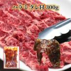 牛肉 ハラミ サガリ たれ付 300g 焼肉 訳あり焼肉セット 業務用 ステーキ 焼き肉 1kg バーベキュー BBQ やきにく ハラミ カルビ ブロック はらみ メガ