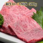 牛肉 リブロース 肩ロース 焼肉 500g 黒毛和牛 焼肉セット 国産 焼き肉 バーベキュー BBQ やきにく バーベキューセット わけあり 肉の日