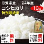 令和元年産 滋賀県東近江市山上町産 特別栽培米コシヒカリ 1等玄米  10kg 送料無料 クーポンで100円引き!