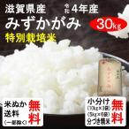 (クーポンご利用で500円引き!)平成29年産 滋賀県産 特別栽培米みずかがみ(1等玄米) 30kg 送料無料