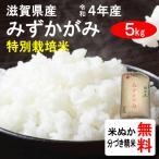 平成28年産 滋賀県産 特別栽培米みずかがみ(1等玄米) 5kg