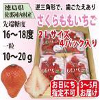 いちご さくらももいちご イチゴ 苺 2Lサイズ 4パック入り 送料無料 配達日指定不可ですがお得!