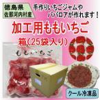 (要冷凍) 加工用冷凍ももいちご 500g 25袋入り(1箱) 送料無料