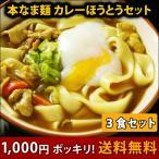 【赤字覚悟のお試し品】1000円ポッキリ!送料無料 本なま麺 ほうとう 特製カレースープ 3食セット