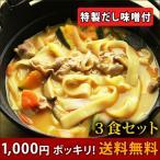 【赤字覚悟のお試し品】1000円ポッキリ!送料無料 本なま麺 ほうとう 3食セット だし味噌付き