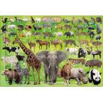 ジグソーパズル 63ピース 子供向け ピクチュアパズル ステップ3 いきものだいしゅうごう 26-645(アポロ社)梱100cm