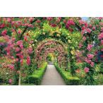 ジグソーパズル 2016ピース ブッチャートガーデンの花のトンネル ベリースモールピース (50x75cm)  23-601(エポック社)梱80cm