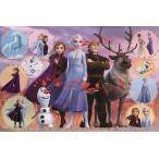 ジグソーパズル 1000ピース ディズニー アナと雪の女王 Frozen 2 Collection(Frozen 2 コレクション)【パズルデコレーション】(50x75cm)  97-005(エポック社)