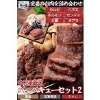 焼肉中村屋 国産牛バーベキューセット2