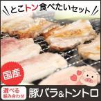 焼肉 肉 バーベキュー  bbq 豚肉 豚バラ トントロ 300g