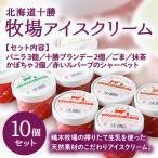 ショッピングアイスクリーム 牧場アイスクリーム 10個セット−北海道十勝のおいしいスイーツをお取り寄せ バレンタイン ギフトにも♪/ハッピネスデーリィ[冷凍発送]