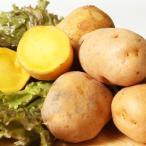北海道十勝産 インカの目覚め LMサイズ10kg まるで栗やサツマイモのような濃厚な甘さが特徴的な人気の品種です。/十勝うまいものや[冷蔵発送]
