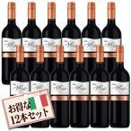 ショッピングイタリア 【送料無料】イタリア産ワイン テッレ・アレグレ サンジョベーゼ 赤(750ml×12本)【セット割引】