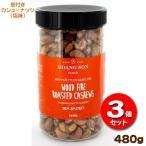 皮付きカシューナッツ 塩味 480g×【3個】