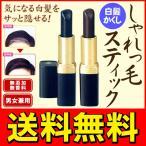 ◆メール便送料無料◆ 気になる箇所にサッと一塗り!口紅型白髪かくし 日本製 無香料・無添加 ◇ しゃれっ毛スティック