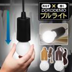 ◆ついで買いセール◆ レトロな電球型!LEDランプ 多目的ライト 電池式 ひっぱるだけでON/OFF クローゼットの明かり取り等 ◇ プルライト HRN