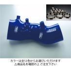 シビック タイプR FD2 インテークホース+ホースバンドセット オプションカラー:マットブラック