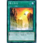 遊戯王 SR02-JP025 竜の渓谷 (ノーマルパラレル) ストラクチャーデッキR−巨神竜復活− SR02