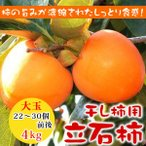 柿子 - 【干し柿用】 大玉 立石柿4kg 22〜30個前後