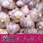 遠州にんにく Mサイズ 1kg 【無農薬】紫色が特徴!