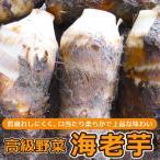 海老芋 子芋 5kg 静岡県豊岡産 たっぷり5kg入り1箱 高級京野菜でおなじみの海老芋