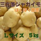 三方原馬鈴薯・男爵じゃがいも・ホクホク肌がキレイな・Lサイズジャガイモ5kg