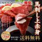 お勧め 馬刺し 馬肉 お肉 肉 送料無料 上赤身ミニパック 約300g 2セット購入で馬刺しユッケ50gもらえる 冷凍A