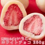 1000円 グルメ ホワイトデー ポイント消化 ギフト 贅沢まるごと いちごの ホワイトチョコ どっさり 250g チョコ 常温便