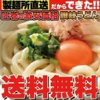 ギフト 鎌田醤油特製ダシ醤油 9袋付き 讃岐うどん 9食分 900g (300g×3袋) 送料無料