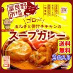 プレミアム 送料無料 ゴロッと 玉ねぎ と 骨付き チキン の スープカレー 2人前 260g×2袋 富良野市場