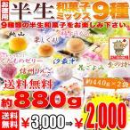 お歳暮 2018 お徳用 半生 和菓子 ミックス 9種880g(440g×2袋) 保存料不使用 送料無料