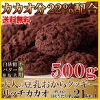ショッピングチョコ 訳あり 豆乳おから クッキー リッチカカオ 500g 国産大豆 詰め合わせ ダイエット おやつ