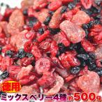 プレミアム 訳あり わけあり ベリー 徳用ミックスベリー4種500g フルーツを食べて内側からのケアをサポート