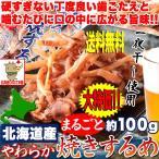 ポイント消化 北海道産 やわらかまるごと 焼きするめ 100g するめ スルメ 送料無料
