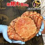 毛ガニ100%北海道オホーツク至高のヘビー級毛がに約800g〜1kg1尾 一級堅品けがに カニ味噌 蟹のかにみそ ボイル加熱済み