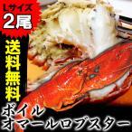 オマールロブスター(オマールエビ) 大型Lサイズ約350〜400g前後2尾セット 送料無料(えび 海老 蝦) ボイル加熱済 冷凍