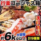 行楽ゴージャス箱 圧巻6kgオーバー大容量9種類セット 焼肉 BBQ 送料無料 冷凍