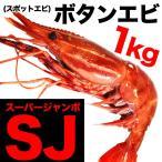 お中元 御中元 略して「SJ」スーパージャンボボタンエビ(スポットエビ)1kg(えび 海老 蝦) 冷凍エビ