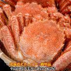 毛ガニ100%北海道オホーツク至高の特大毛がに約570g2尾 一級堅品けがに カニ味噌 蟹のかにみそ ボイル加熱済み急速冷凍