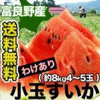 訳あり 北海道富良野産小玉すいか約8kg 4〜5玉前後 送料無料 冷蔵